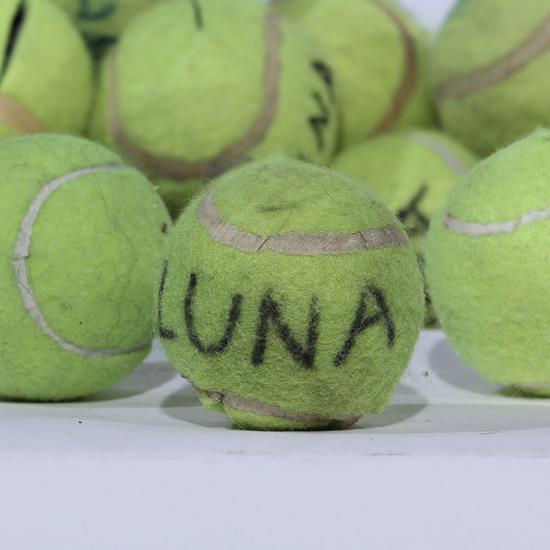 Image sur Balle de tennis